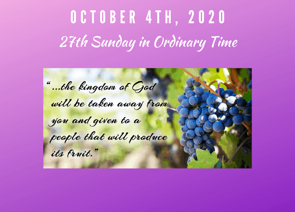 Watch the 27th Sunday in Ordinary Time 10/4/20 @ 10:30 am.